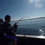 Light-Tackle-fishing-Trips-for-Pollack-1024x768